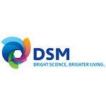 DSM_Thumbnail