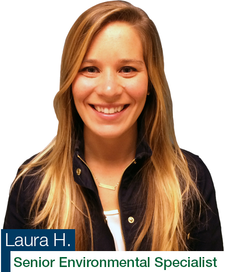 Laura H. Triumvirate Environmental services