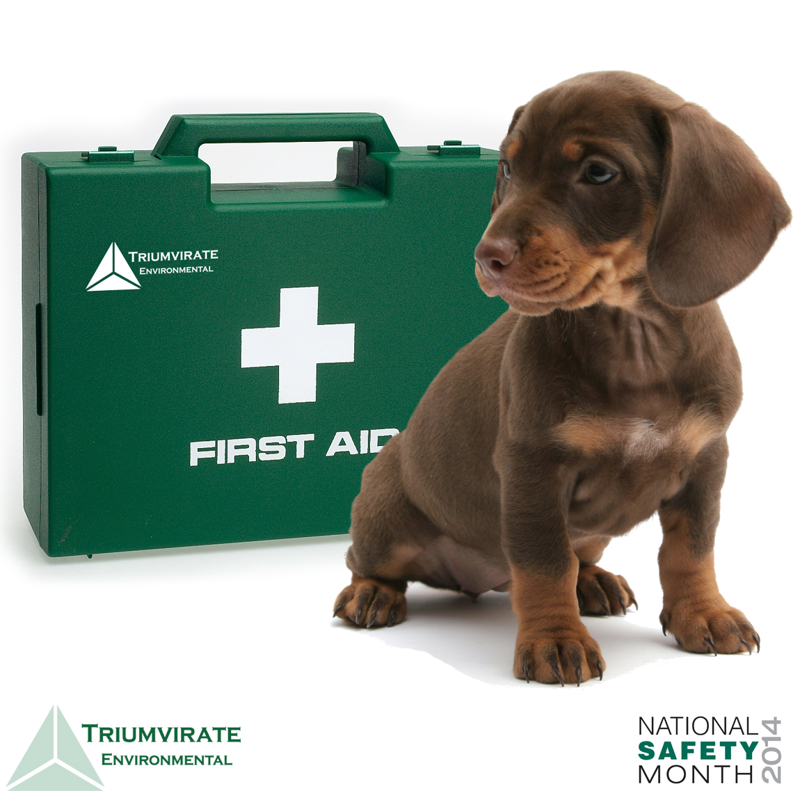 First Aid Puppy Picture