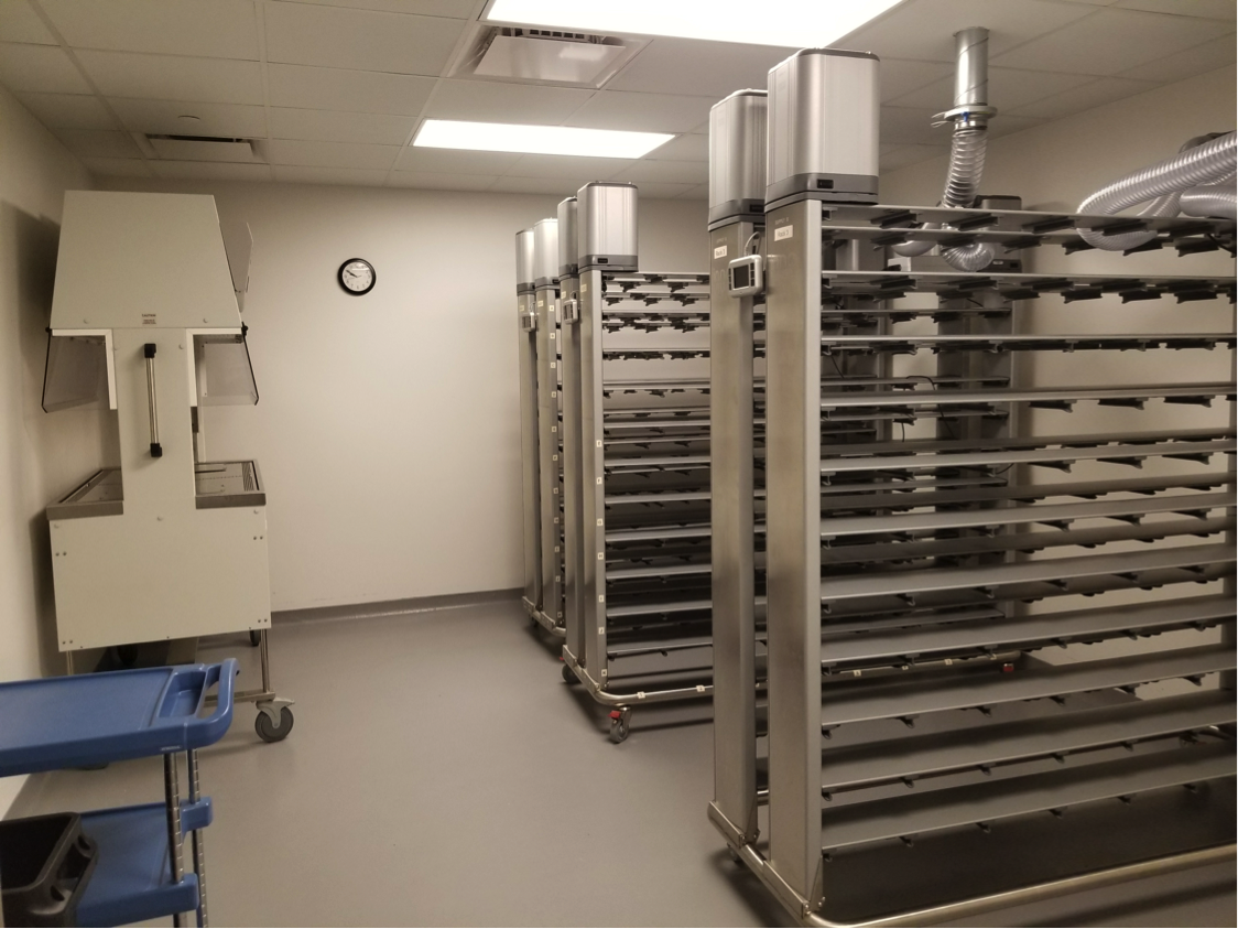 Biological Decontamination Services