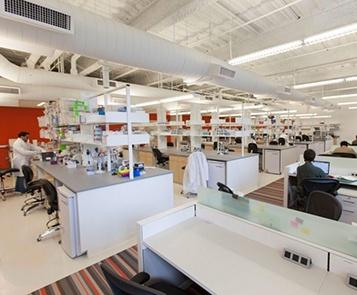 Lab Central_357x295.jpg