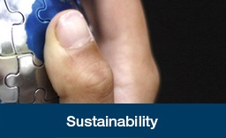 Sustainability-Case-Study.jpg