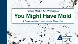 You-Might-Have-Mold-Webinar.jpg