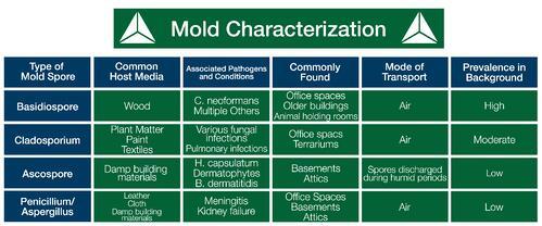 Mold characterization chart by Triumvirate Environmental