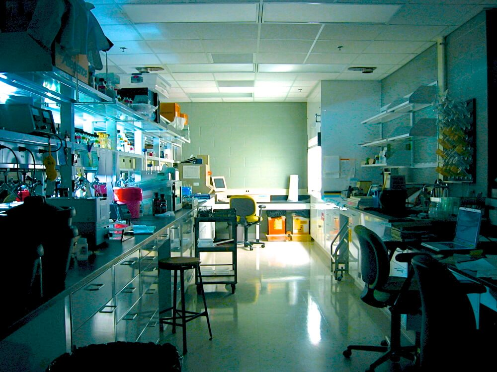 Laboratory with fume hood
