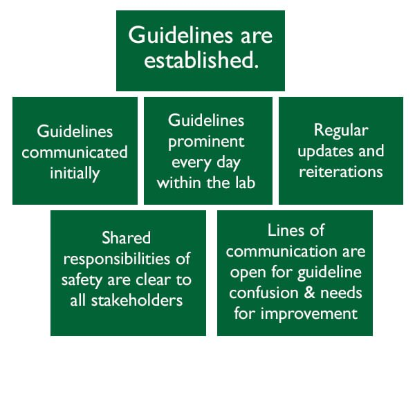 Guidelines in green squares graphic